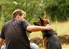 Dogs provide stress relief for veterans