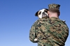 A study by the VA is examining the effects of service dogs on veterans with PTSD.